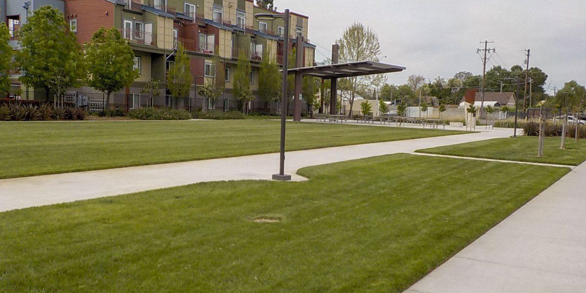 Sycamore Park 2